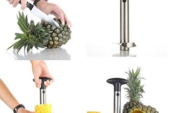 Best pineapple corer (slicers) 2017 Reviews